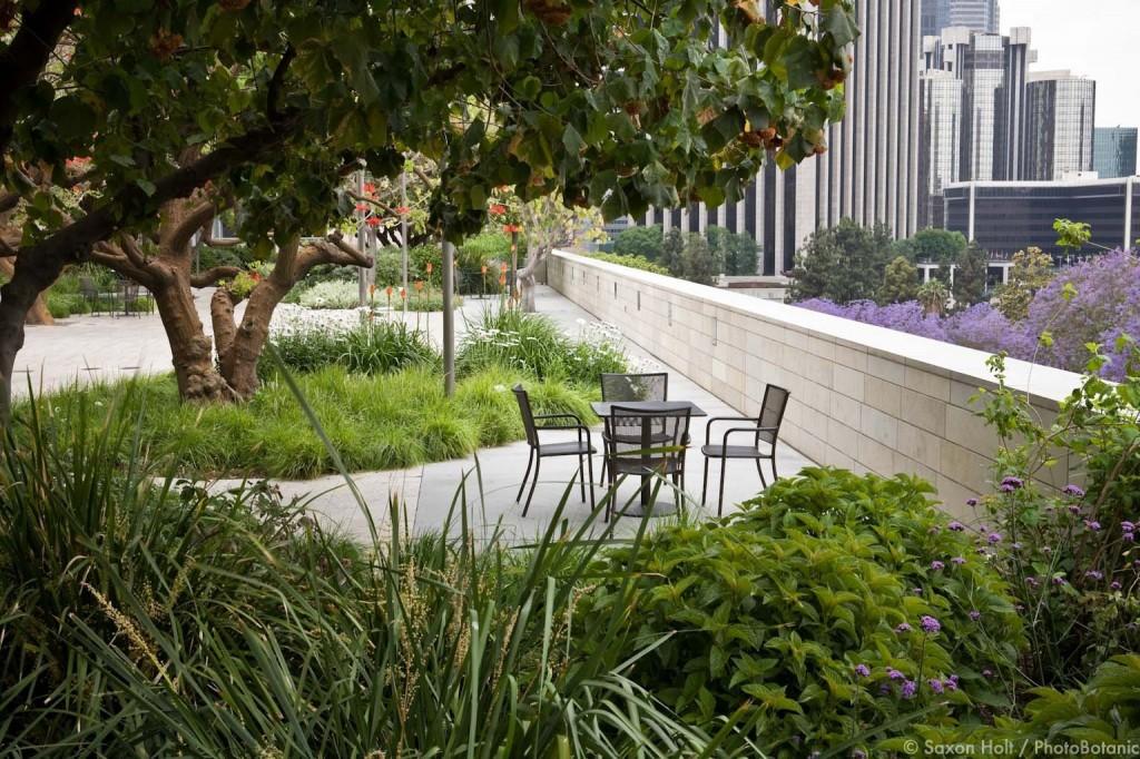 holt_983_220 Gardens at Disney Concert Hall, design by Melinda Taylor