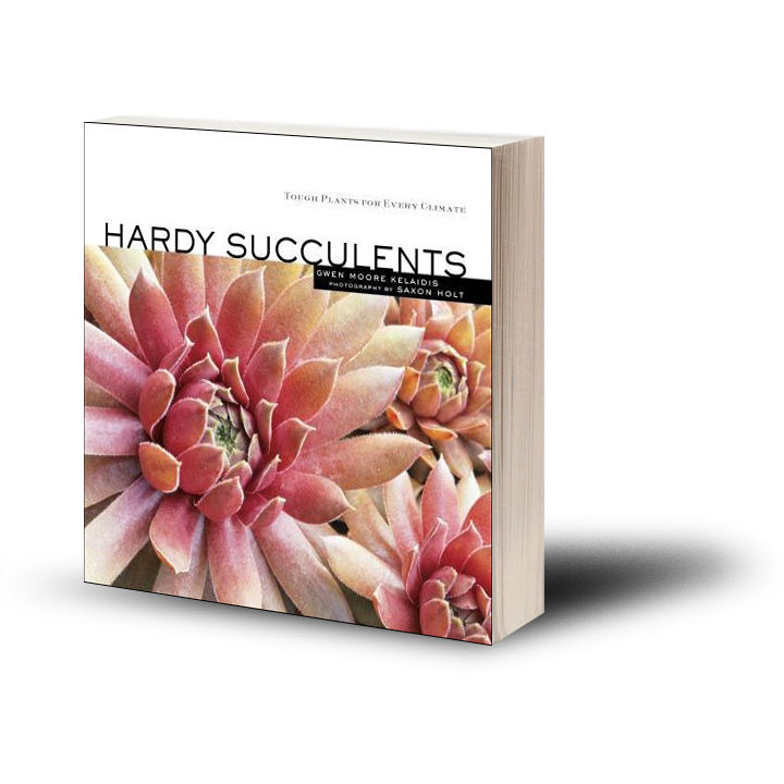 Hardy Succulents book