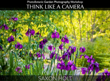 PhotoBotanic Garden Photography Workbook, Think Like A Camera eBook Cover