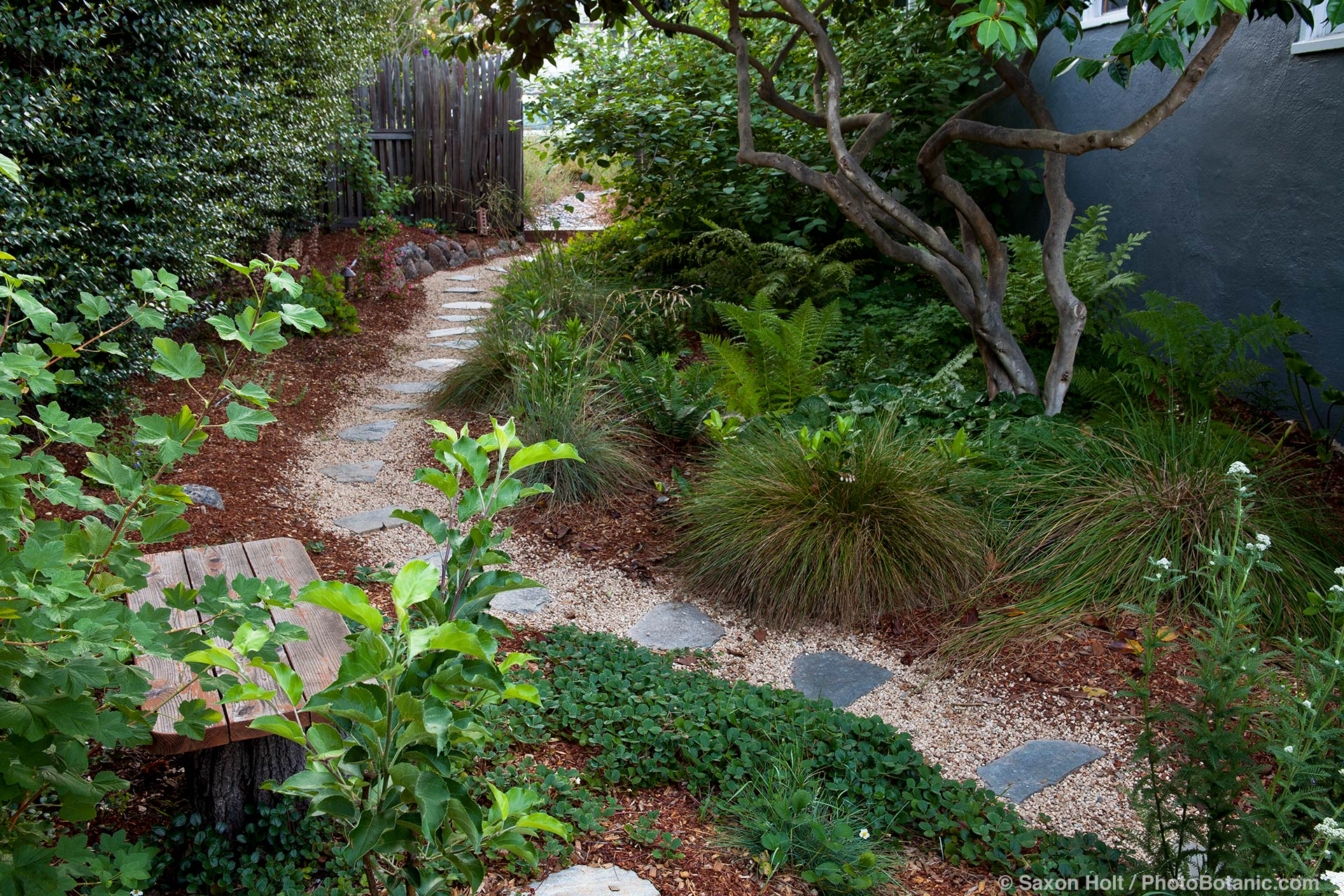 Mulching and pruning are just as important to natives as other garden plants