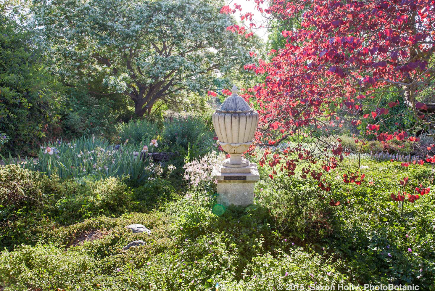 Los Angeles County Arboretum And Botanic Garden Los Angeles Arboretum Engagement Josh And