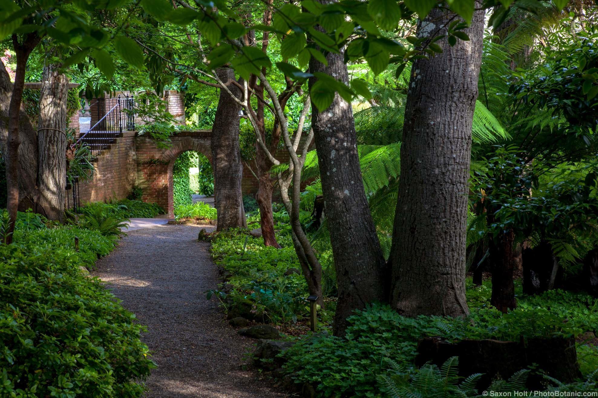 Gravel path through woodland garden at Filoli toward garden gate to formal garden