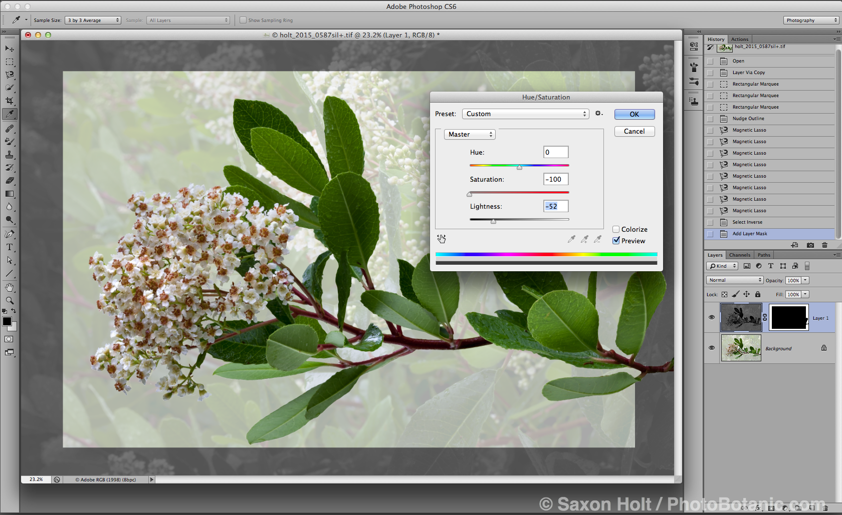 screenshot-toyon-extraction_09