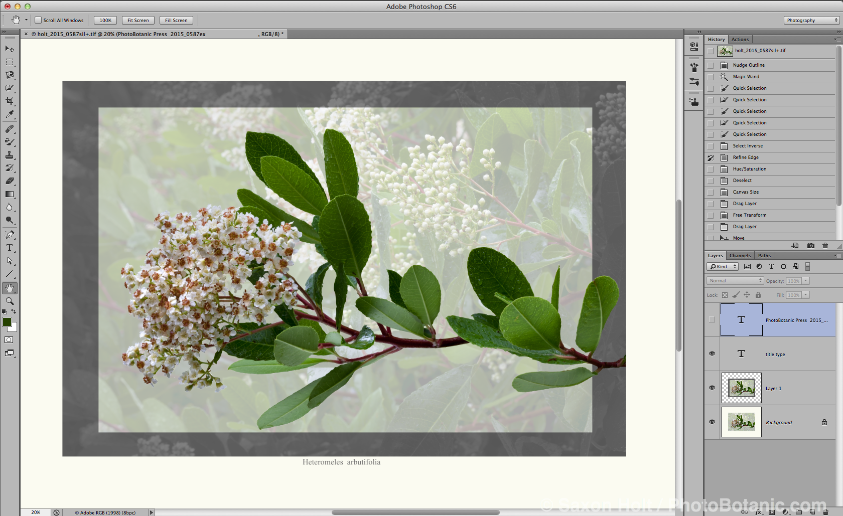 screenshot-toyon-extraction_11
