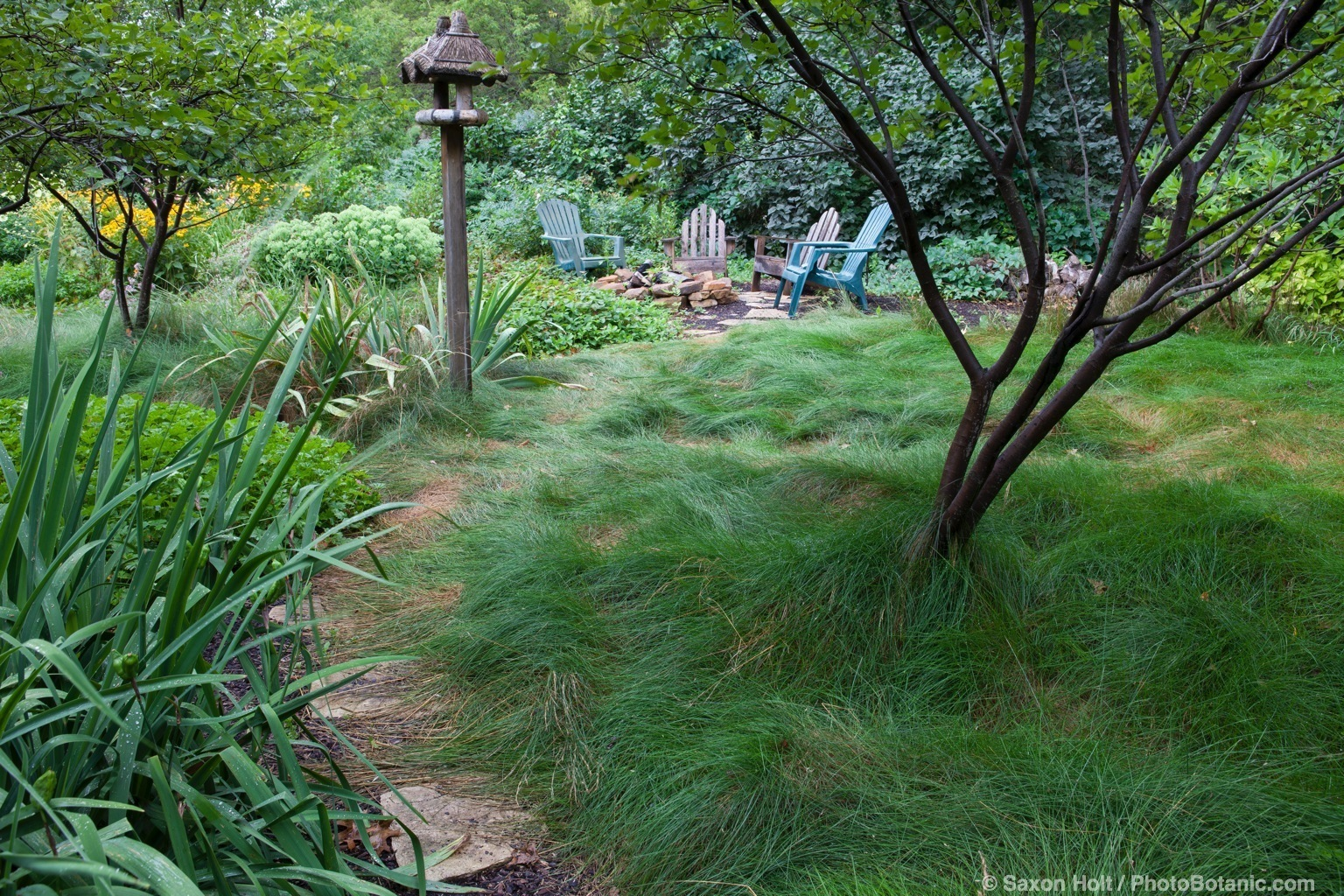 Lawn substitute, no mow fescue meadow with path leading to seating area past bird house, Minnesota garden