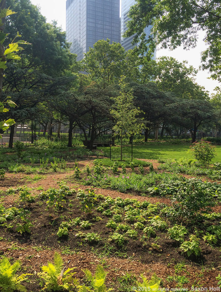 Battery Urban Farm - New York City