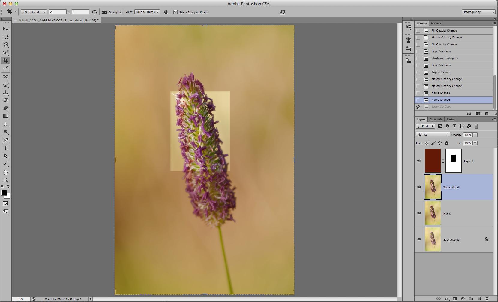 Screenshot 1163_744extraction