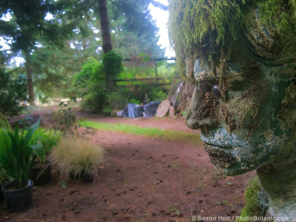 Beth's Garden, September