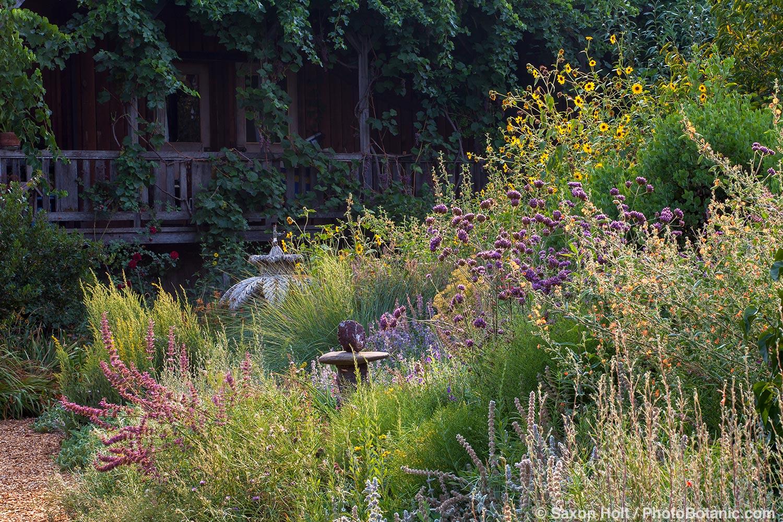 uncropped, Perennial border with pollinator plants - Frey Garden