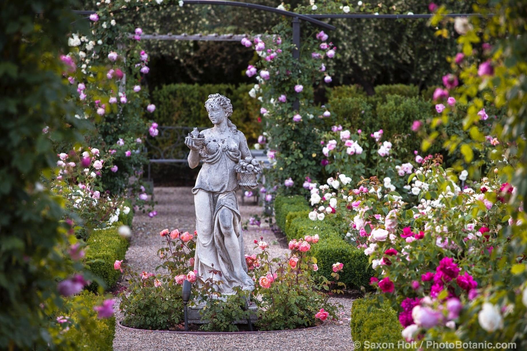 Statue of classical woman as focal point in axis of rose garden; Magowan garden