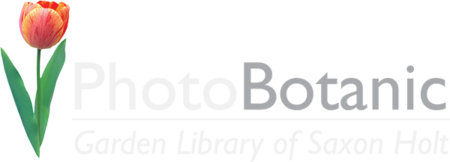 Photobotanic