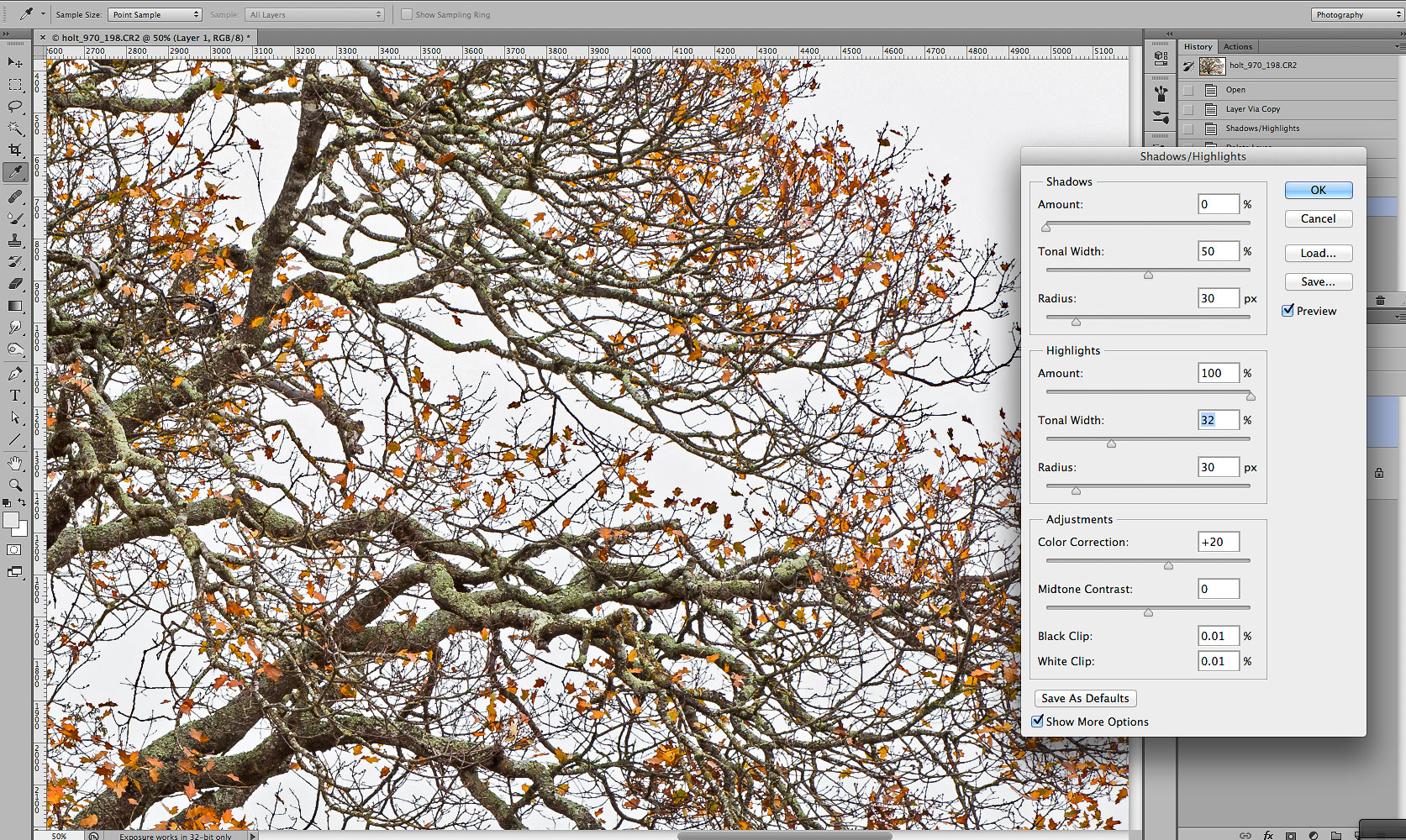 Screenshot - highlight recovery, oak branches, file 970