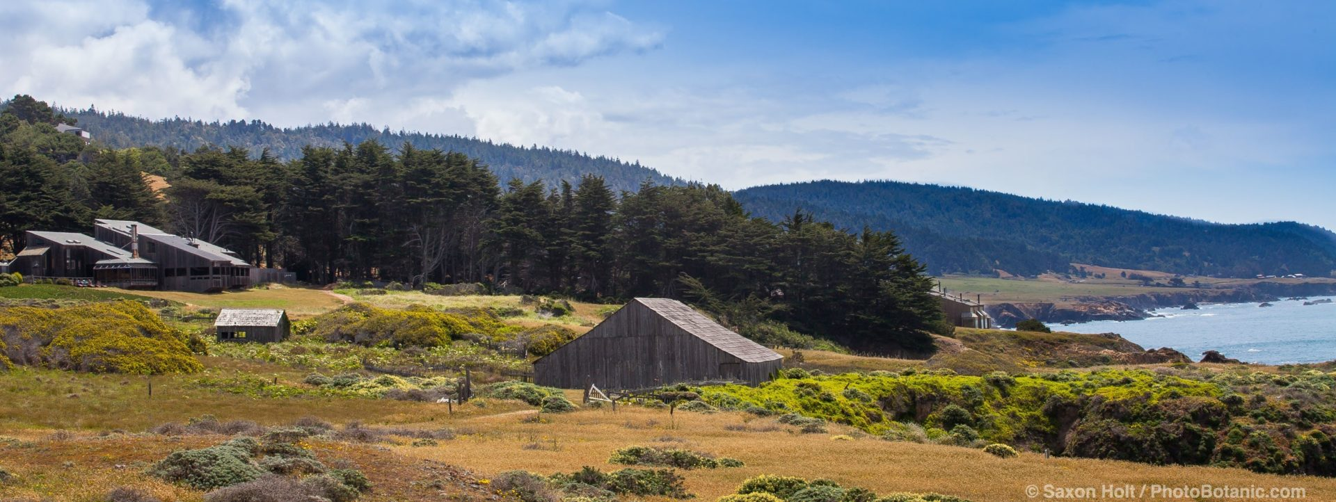 The Sea Ranch Lodge from Black Point coastal bluff