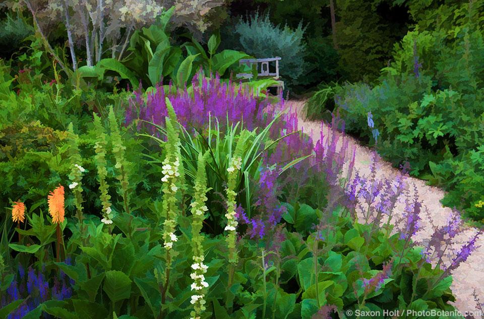 Path through perennial borders with orange Knifophia in Gary Ratway garden