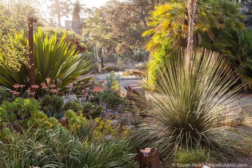 Bancroft Garden