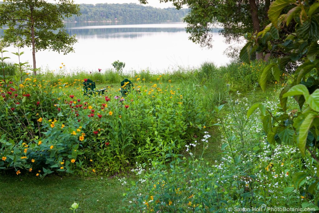 Connecticut meadow garden with native wildflowers; Larry Weaner Design