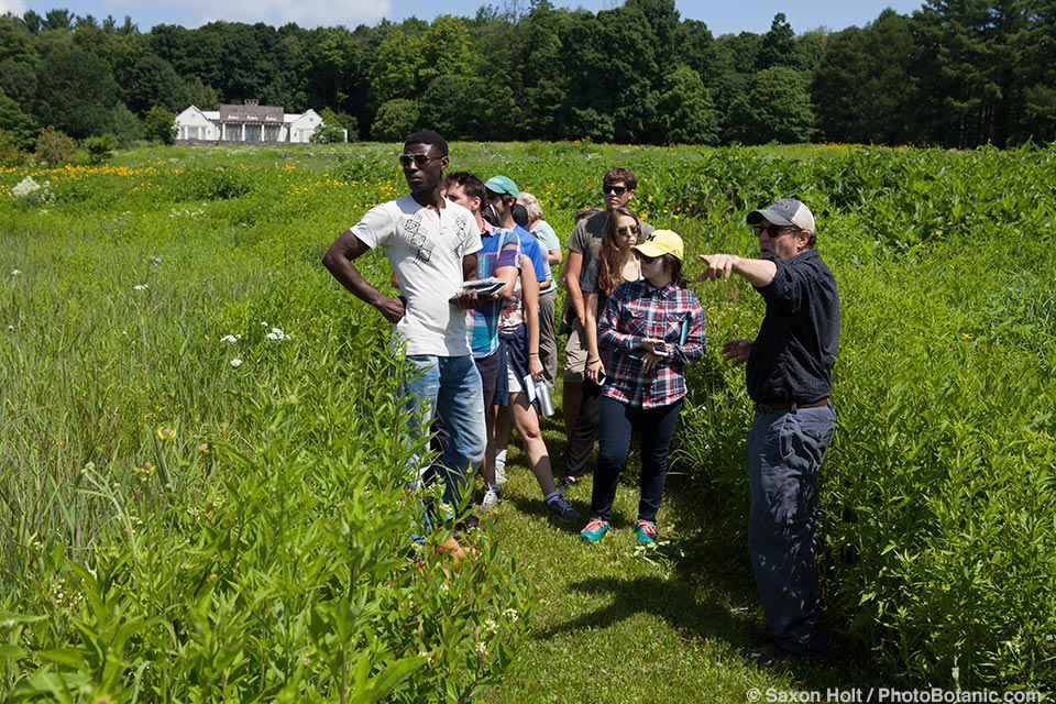 Larry Weiner leading tour of large meadow project in Connecticut
