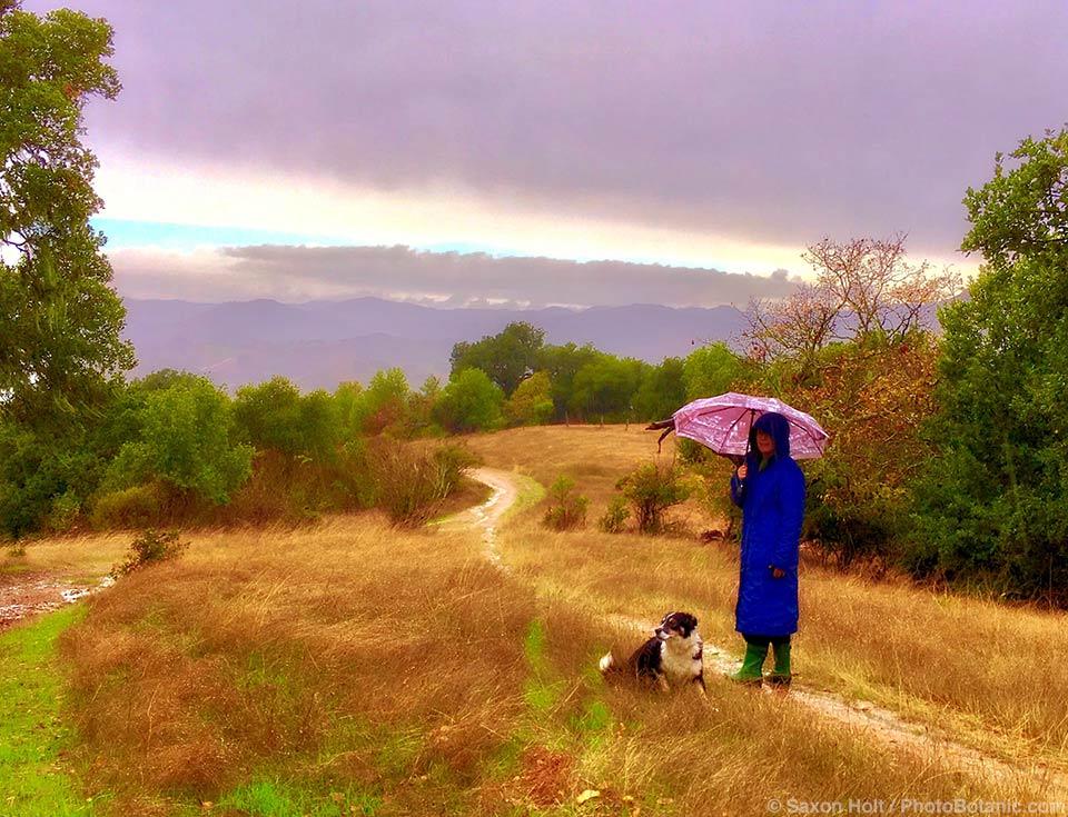 Mary and Kona on rainy Cherry Hill walk