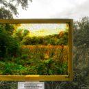 Framing a Framed View