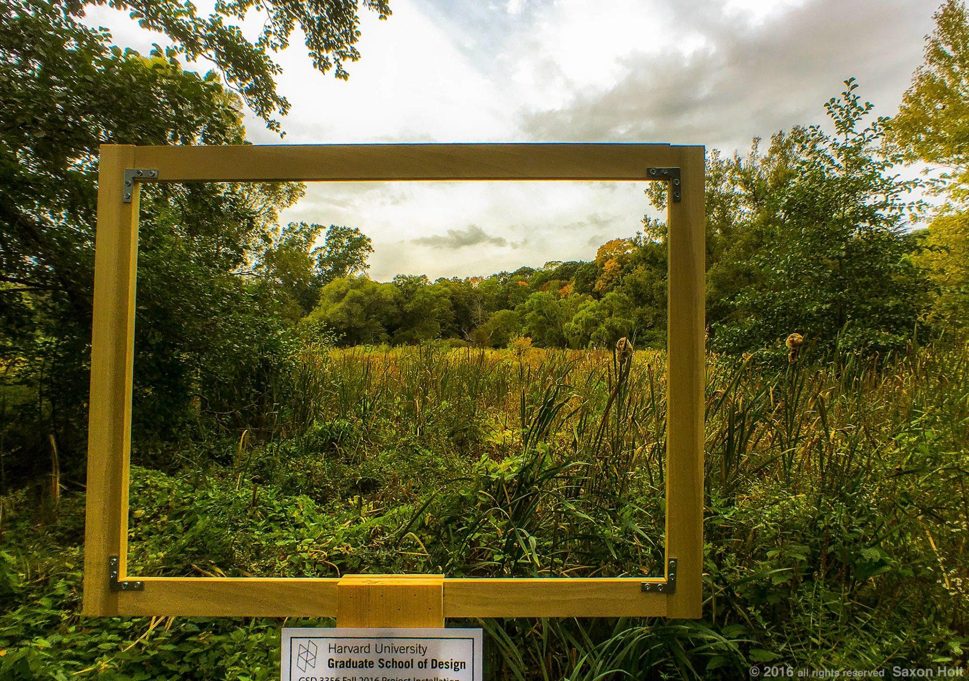 Framing a view Arnold Arboretum
