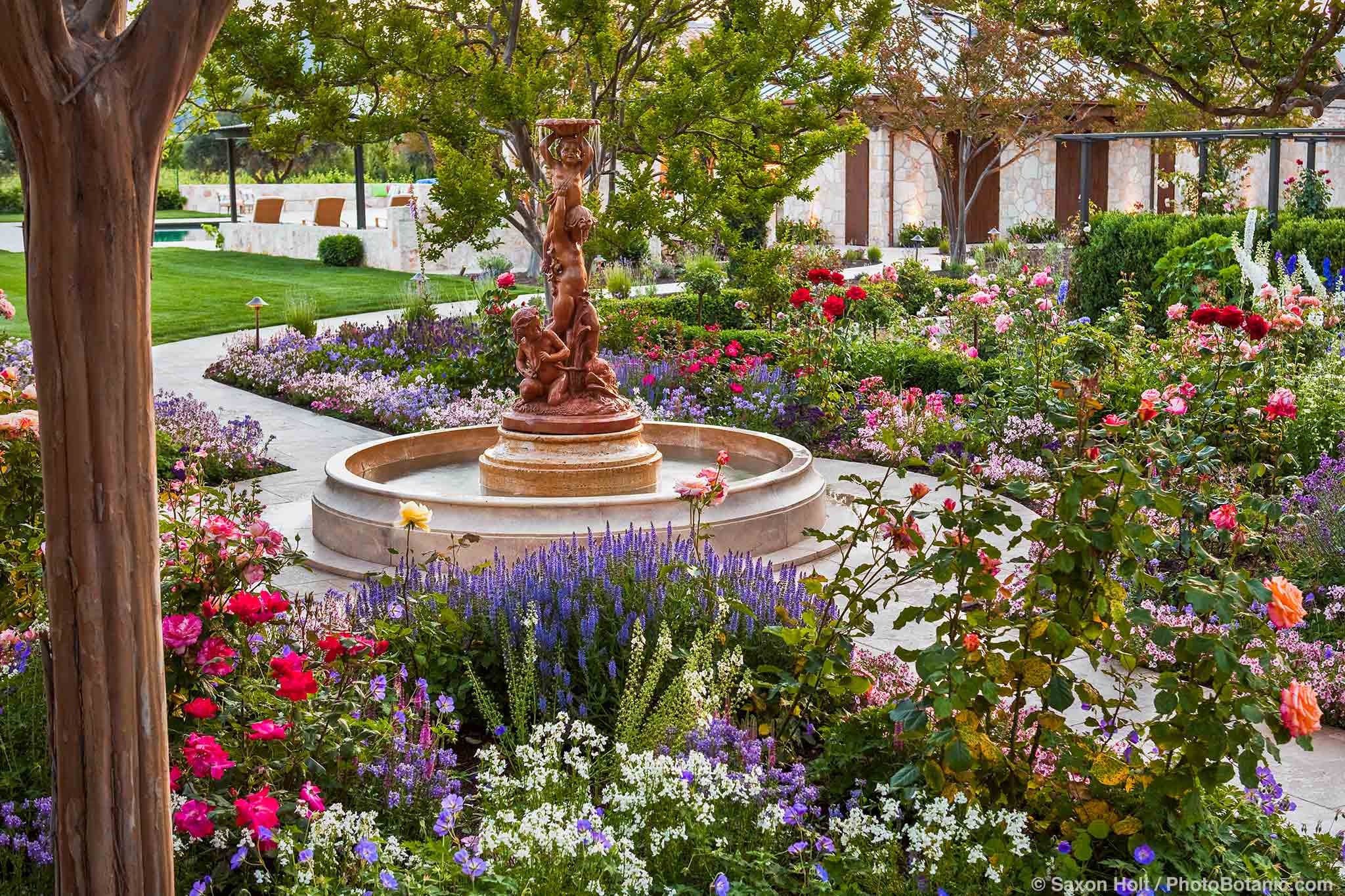 Fountain focal point in courtyard flower garden with roses in California country garden