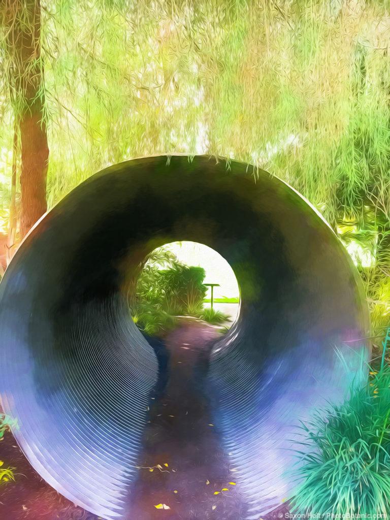 Garden installation 'Rise' by Planet Horticultureat Cornerstone Gardens, Sonoma