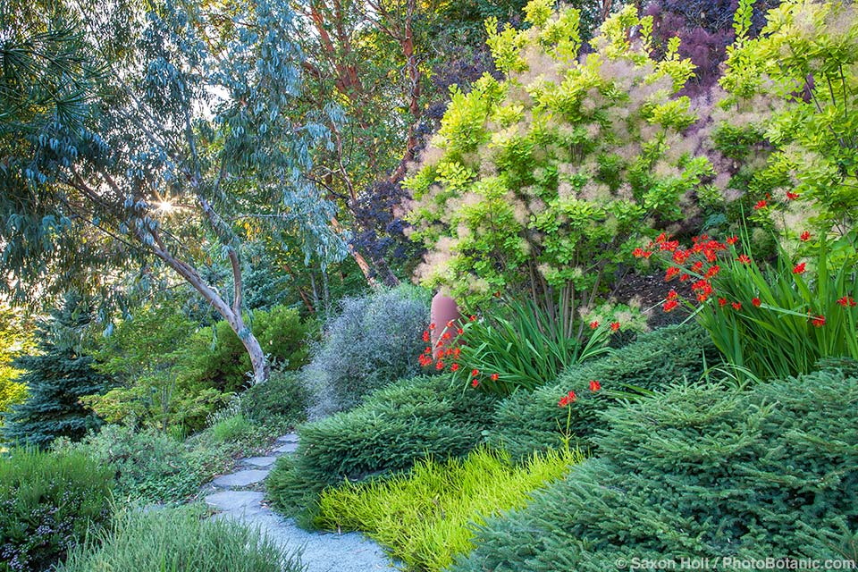 Albers Vista Garden, Seattle Washington